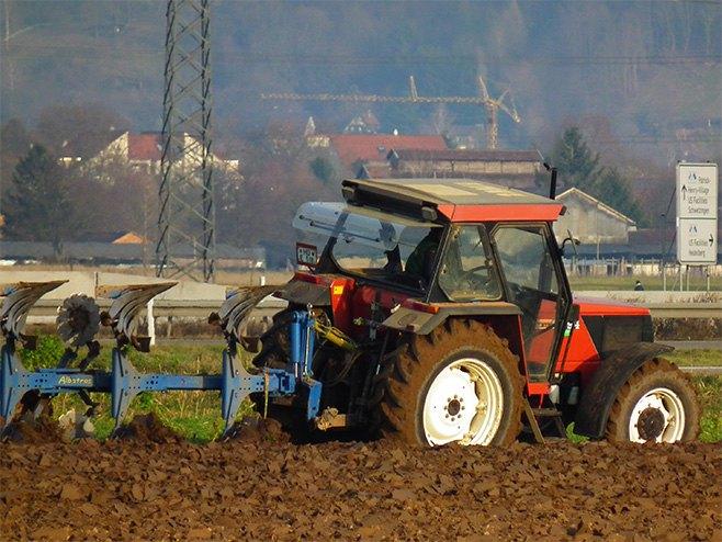 Пољопривреда - Фото: илустрација