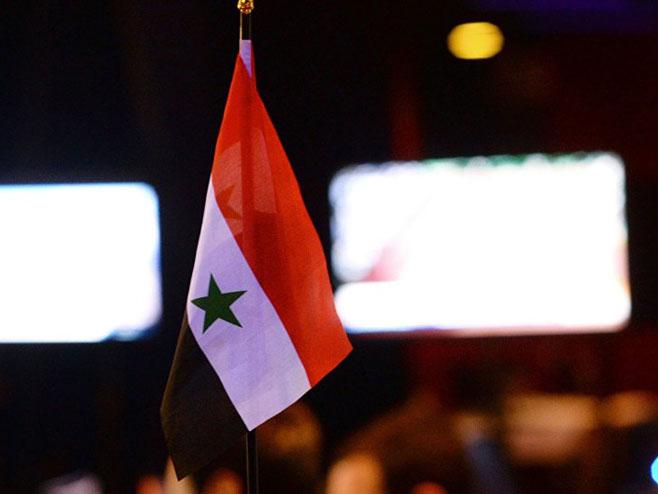 Сирија (Фото: Sputnik/Михаил Воскресенски) -