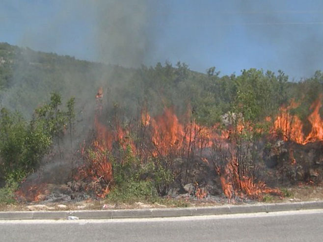 Пожари у Херцеговини - Фото: РТРС