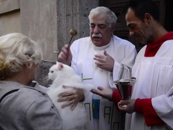 Sveštenici blagoslovili kućne ljubimce u Madridu (Foto: Screenshot)