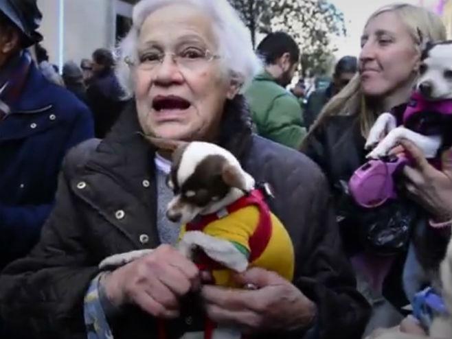 Мадрид: Грађани чекају у реду на благослов за кућне љубимце (Фото: Screenshot)