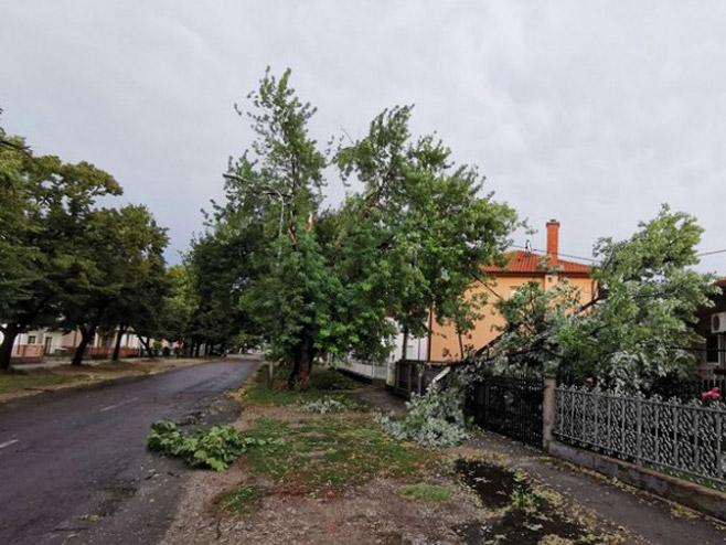 Фото: infobijeljina.com