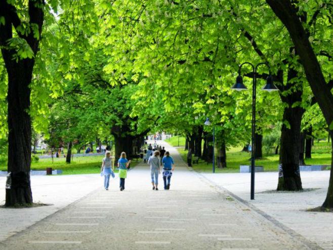 Zelenilo u gradovima (Foto: WDG Photo/Shutterstock) -