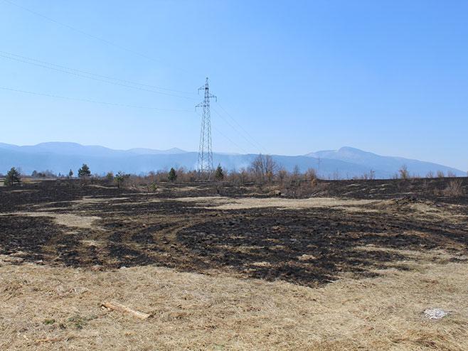 Lokalizovan požar u opštini Petrovac (Foto: SRNA)