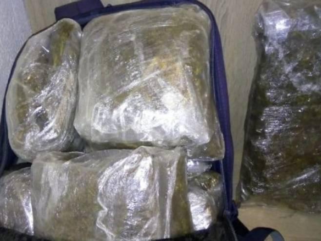 Одузета опојна дрога марихуана (Фото: РТРС)